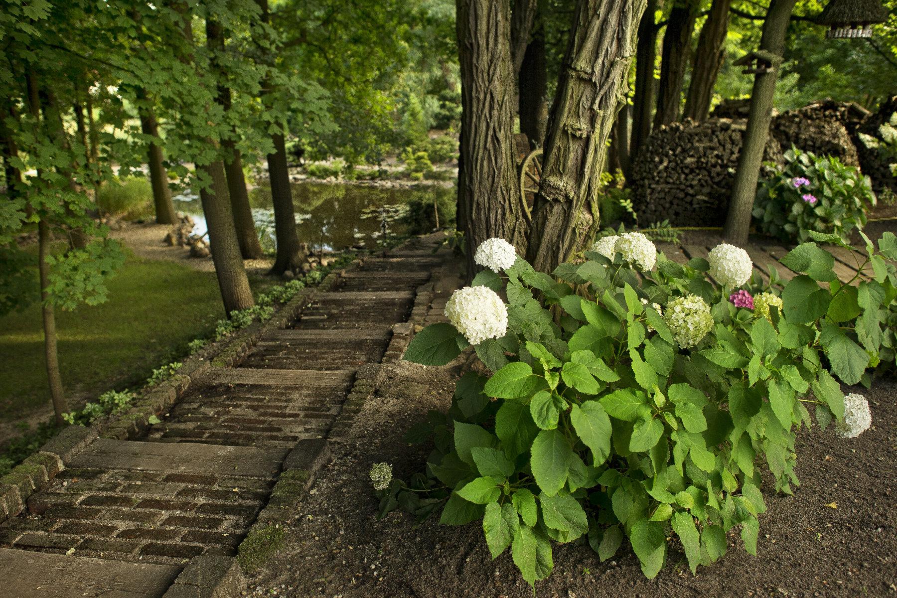 Odpoczynek na łonie natury Forrest Hotel Zielona Góra