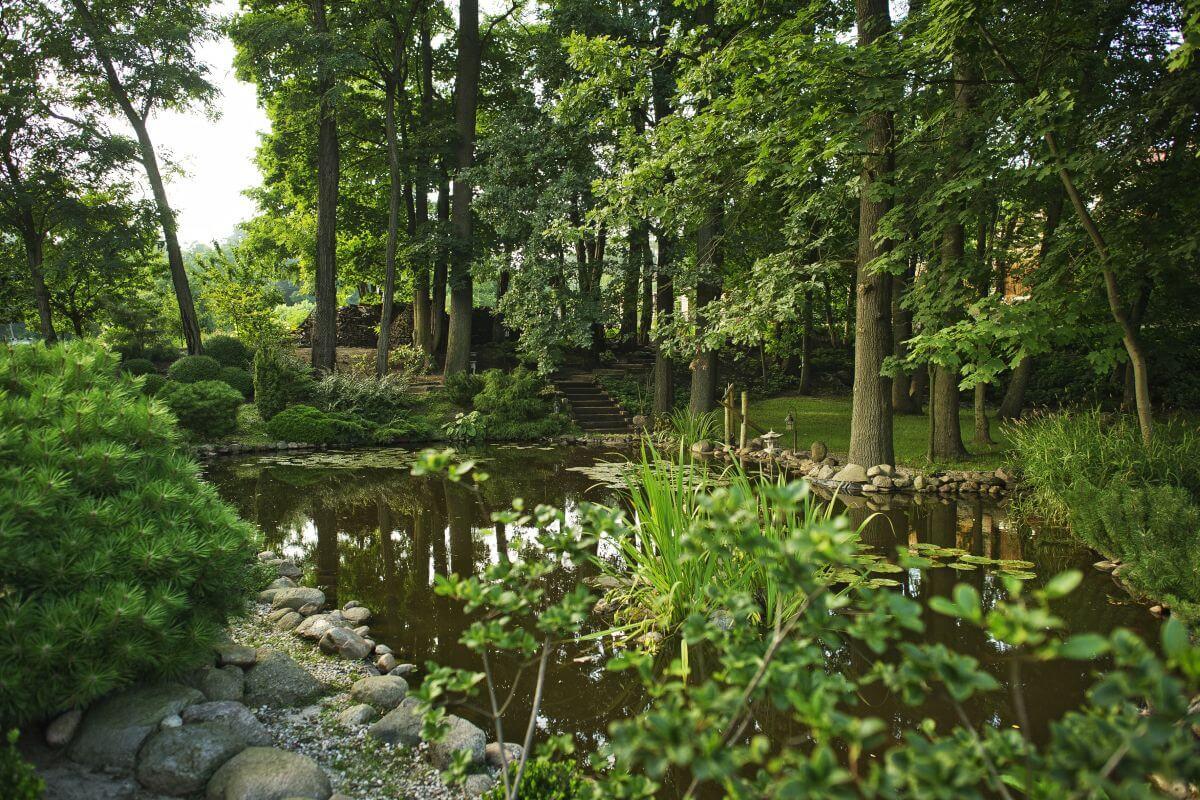jak wybrać hotel ogród relaks