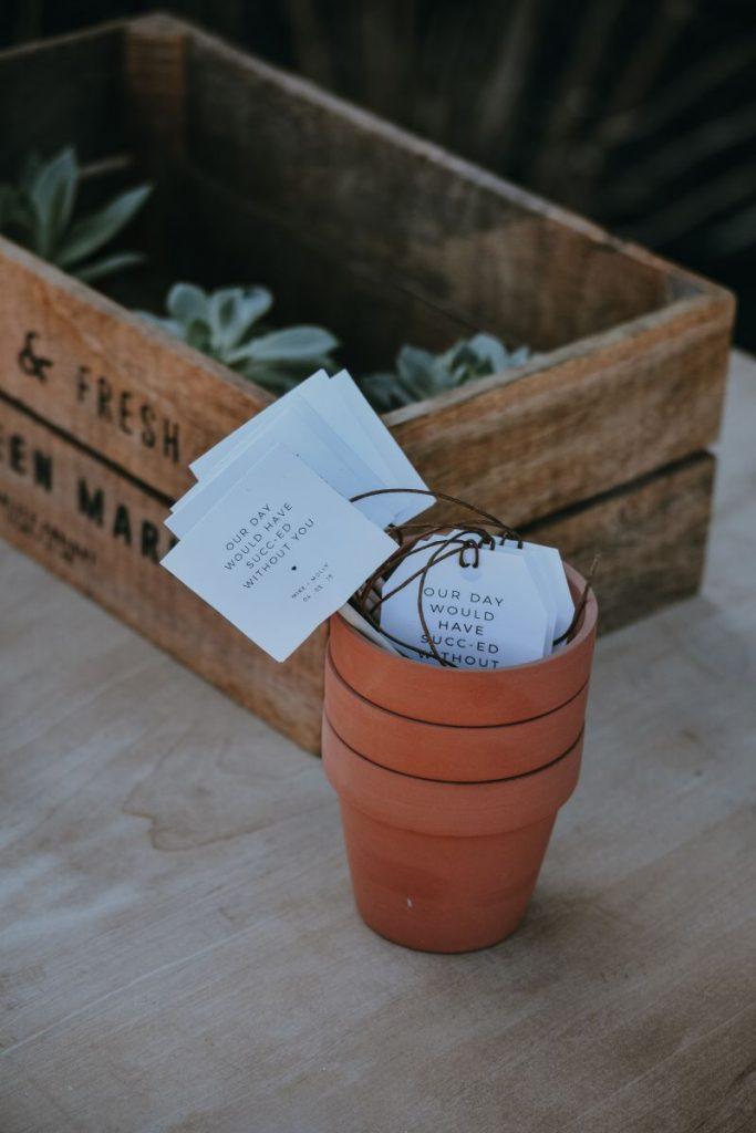 kwiatki kaktusy prezent dla gości weselnych